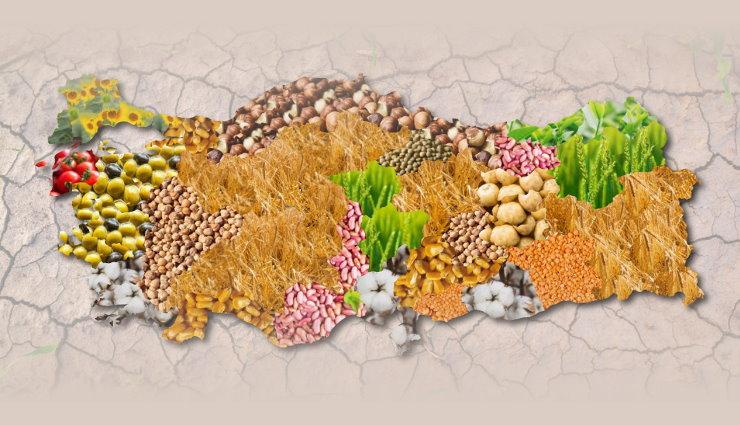 Türkiye'de Tarımcılığın Tarihi